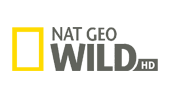 national geographic channel wild hd